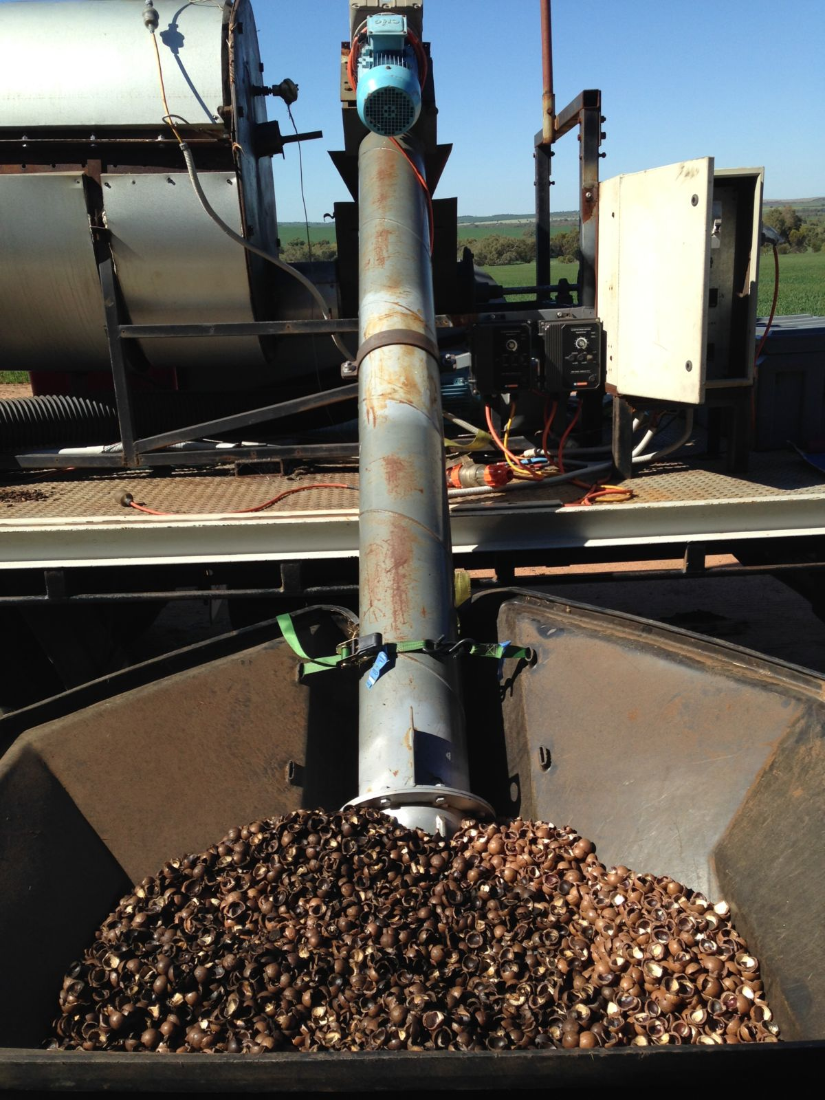 Auger feeding macadamia nut shell into pyrolysis kiln