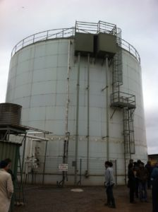 Large anaerobic digester at a piggery.